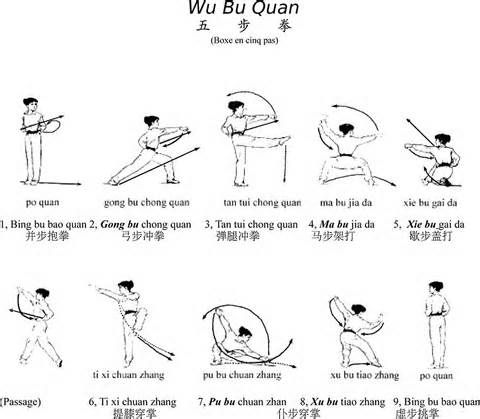 Tai Chi and Chi Kung Institute Books Charts Videos amp DVDs