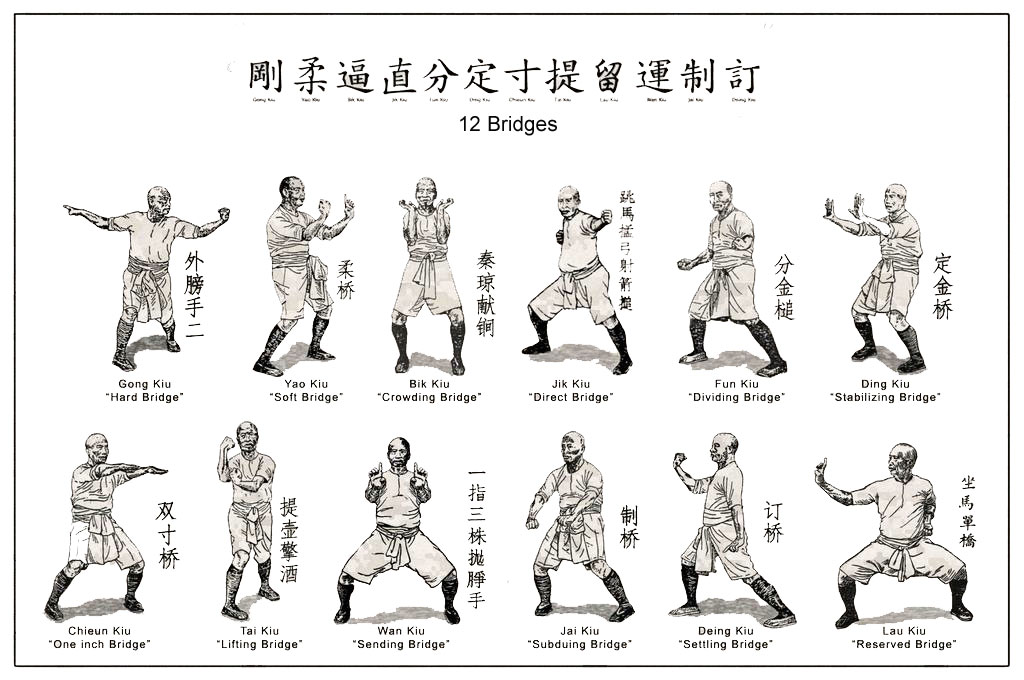 Image result for chinese hung gar diagram
